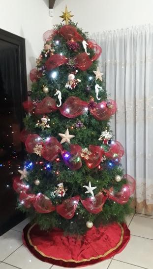 Arbol Navidad Yenory para ilustrar historia en blog adobe49